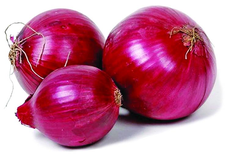onion city ru images usseekcom