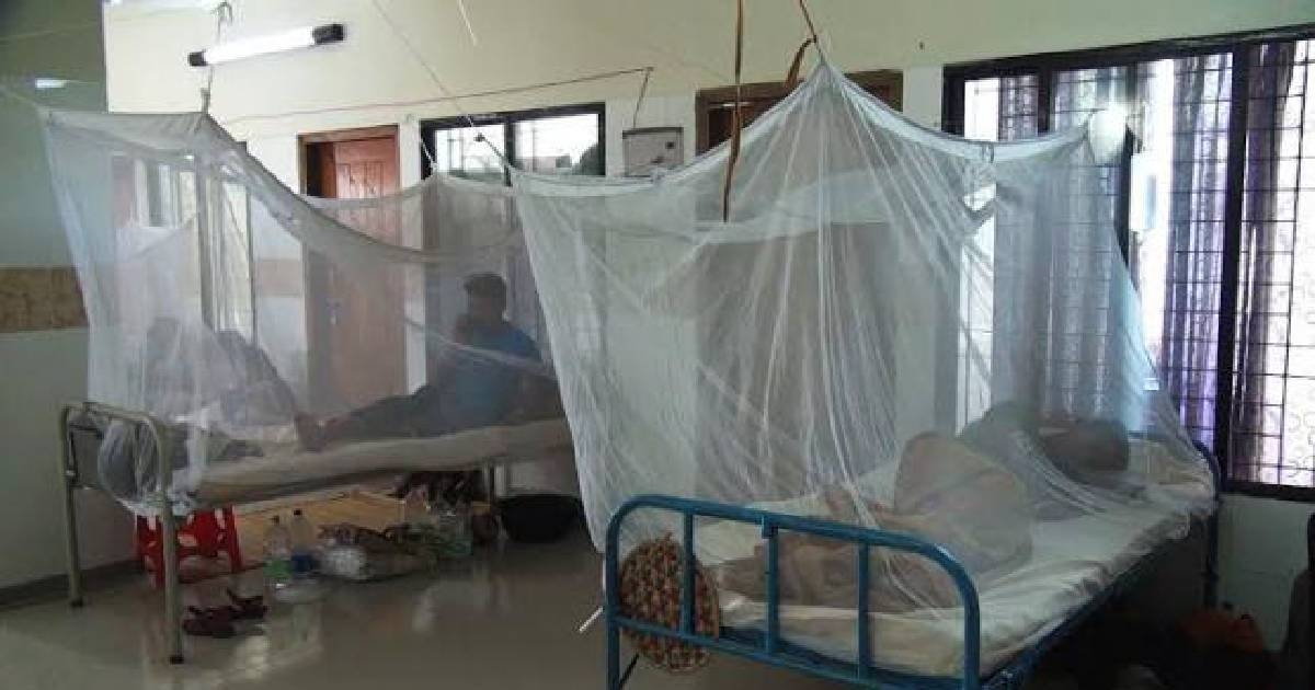 37 dengue patients being treated at hospitals