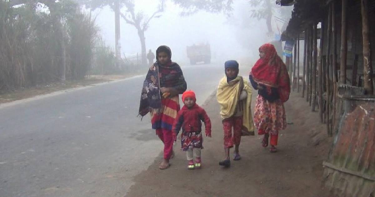 Cold-related diseases killed 57 people since November: Govt