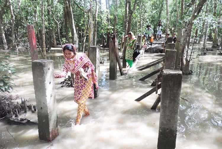 Amazing Tengragiri Eco-park