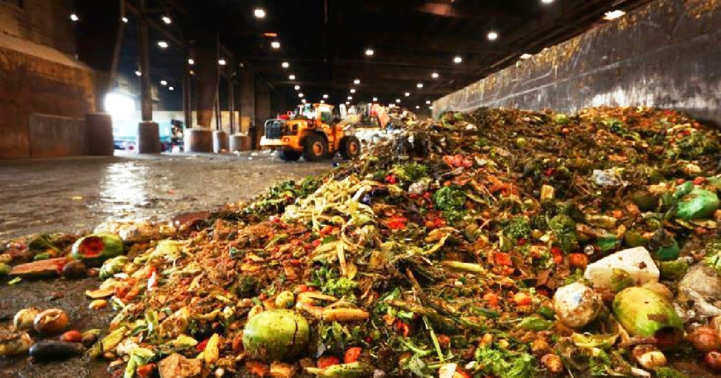Consumers waste much more food than commonly believed: study