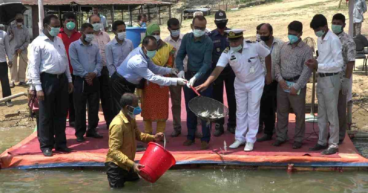 30-ton fish fry to be released in Kaptai Lake: BFDC