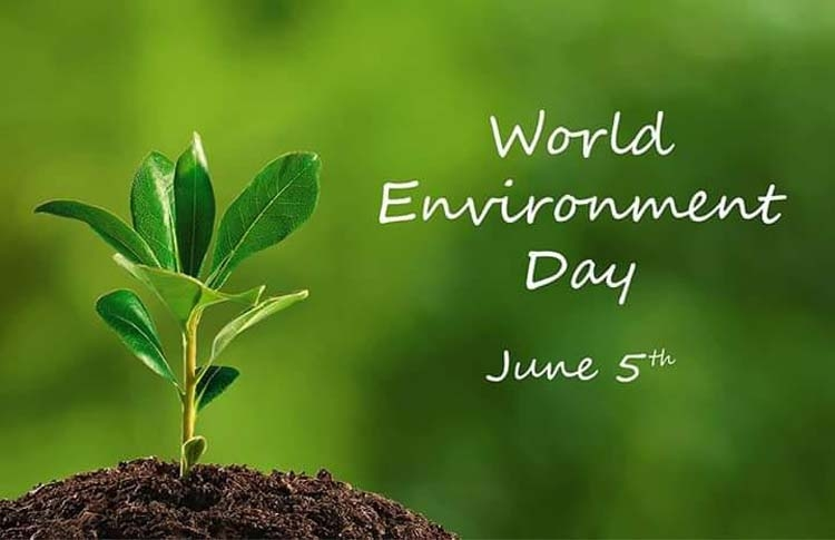 World Environment Day 2020: Theme and it's significance.