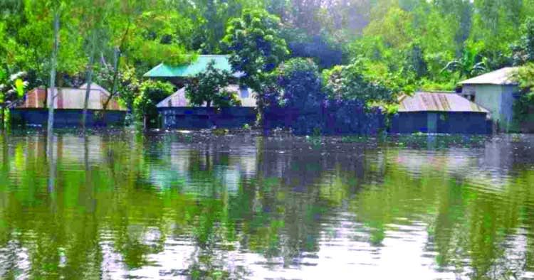 Take proper steps to address flood