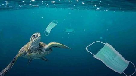 Plastic face masks, hand sanitizer bottles trigger pollution