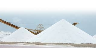 No shortage of salt in country: BSCIC