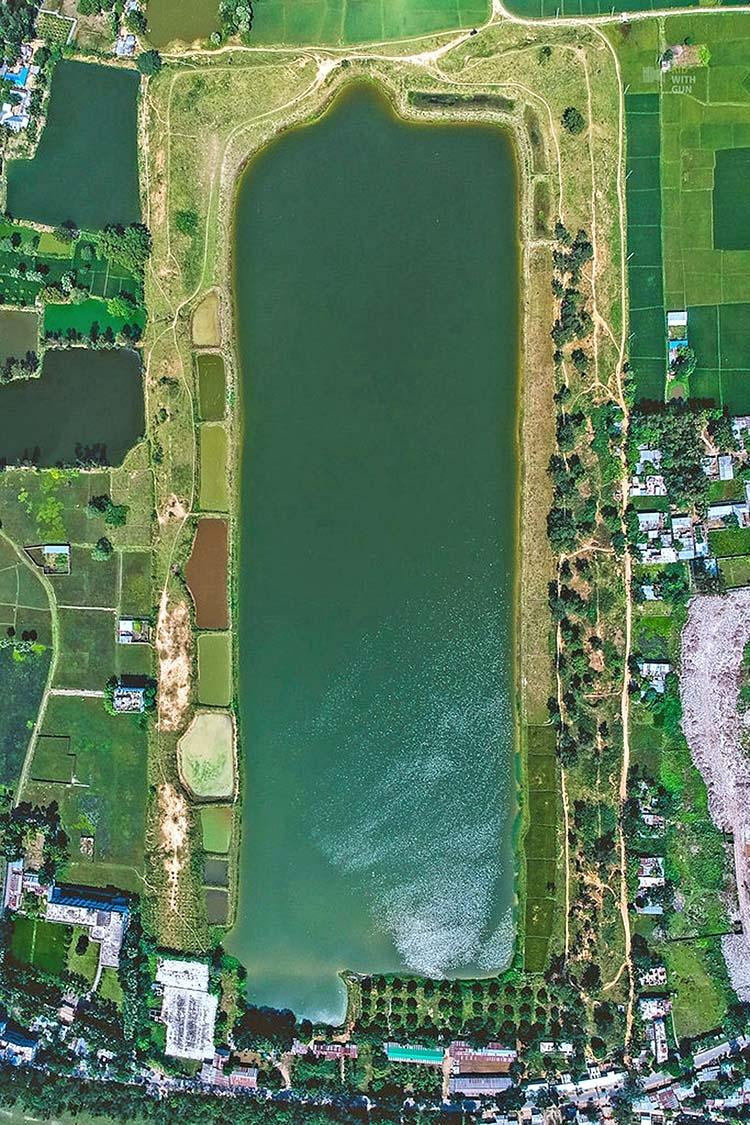 The natural wetland in Bangladesh