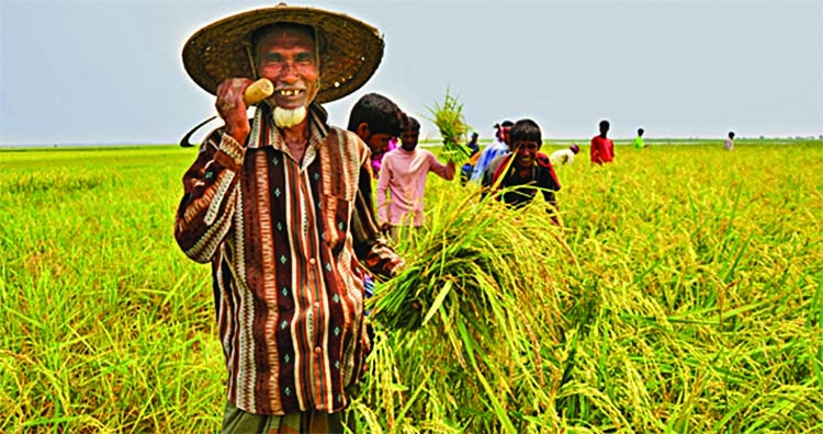 BD climbs 13 notches on Global Hunger Index