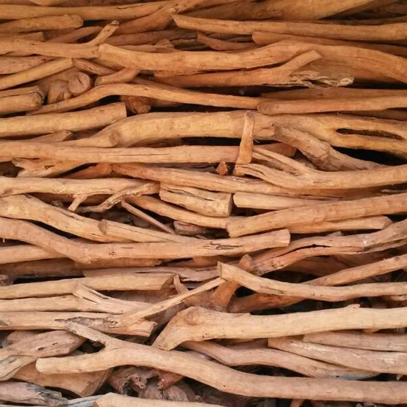 Sandalwood seized in Jashore