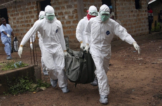 Ebola infects 14 people, kills 9 in Guinea, DRC: Africa CDC