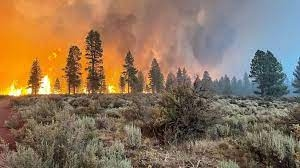 Largest wildfire in US burns through 300,000 acres