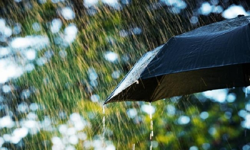 Light to moderate rain likely over country