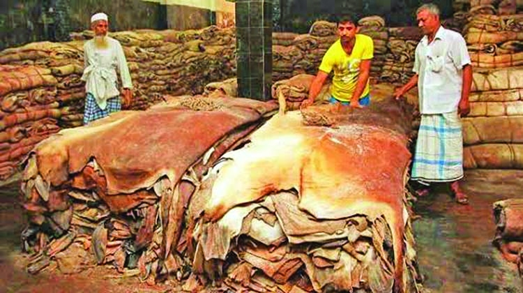 Effective Steps Must to Save Export Oriented Rawhide Industry