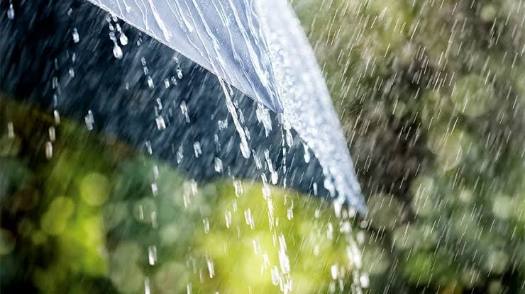 Light to moderate rain likely in parts of country