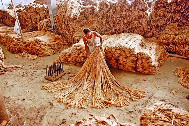 essays on value chain of jute products in bangladesh