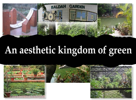 An aesthetic kingdom of green