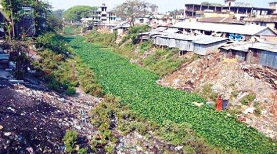 Bashia River turns into  dead canal in Sylhet