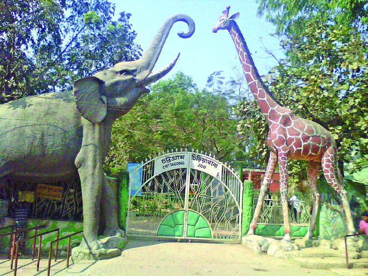 Chittagong Zoo fails to attract large visitors