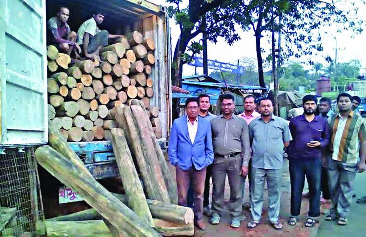 Huge timber seized