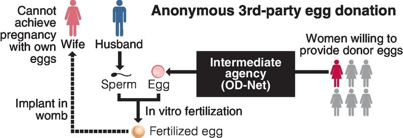 1st Japan birth achieved via egg