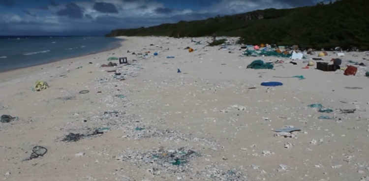 Scientists find 38m pieces of trash on Pacific island