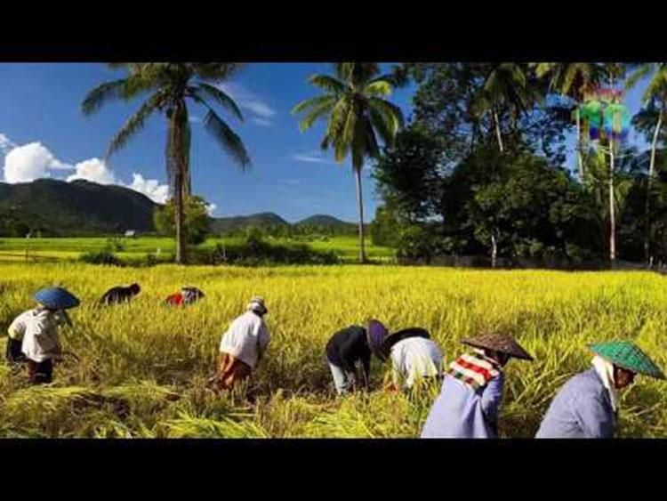[WATCH]: Beautiful Bangladesh in drone video