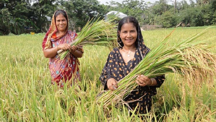 More agri-budget demanded for food security