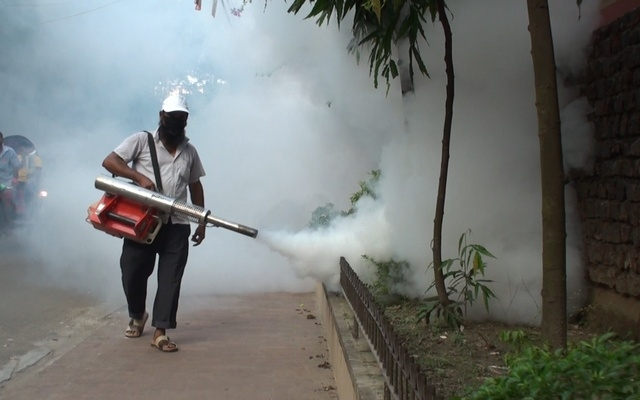 Chikungunya spreads outside Dhaka