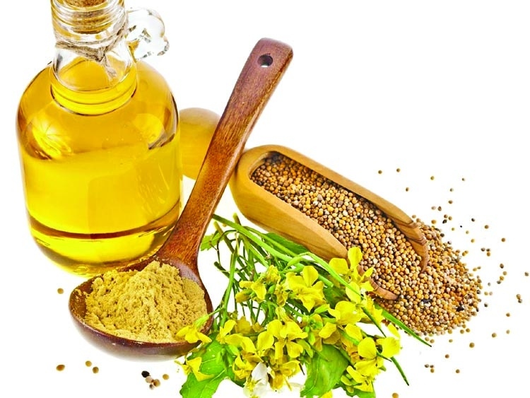 Mustard oil vs vegetable oils
