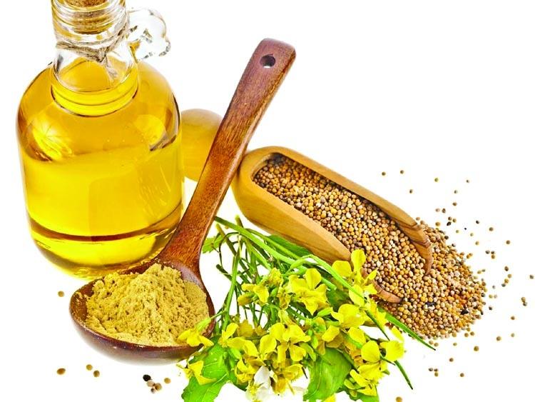 Mustard oil vs vegetable oils
