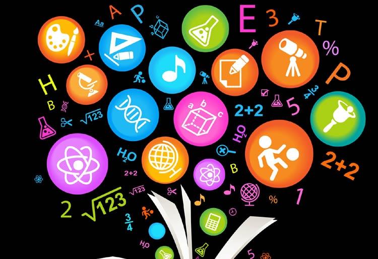 Interdisciplinary learning: A critical exposure
