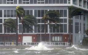 Five residents found dead in Florida nursing home ravaged by Irma