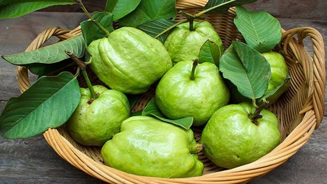 15 Guava benefits from weight loss friendly and more