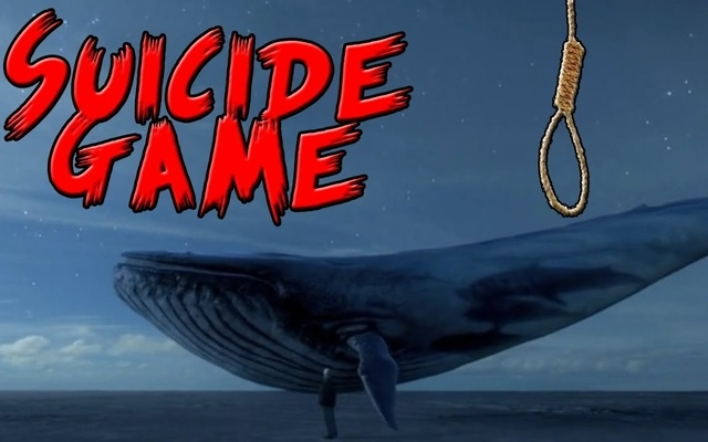 Dial 2872 to report 'suicidal Blue Whale'
