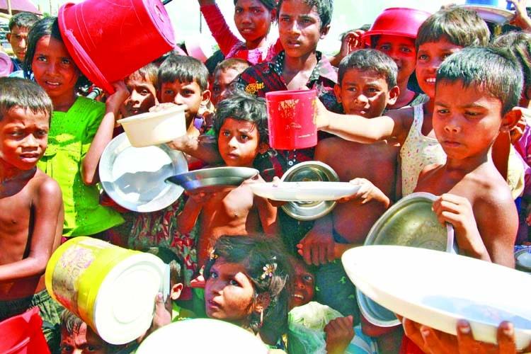 'Rohingyas damage Tk 1.5b forest'