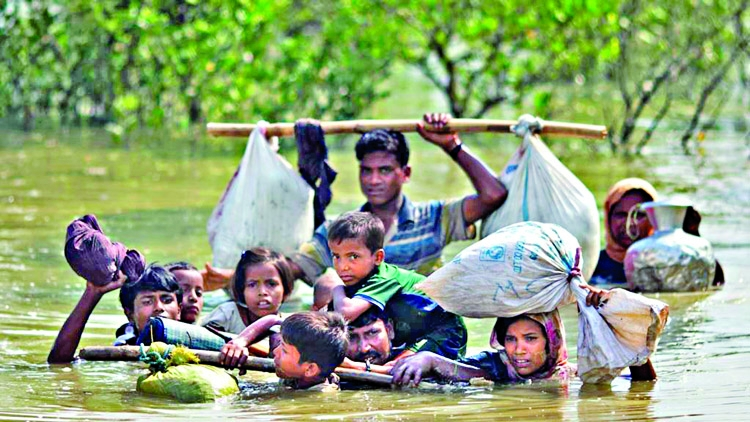 Hostile terrain slows aid to Rohingyas: IOM