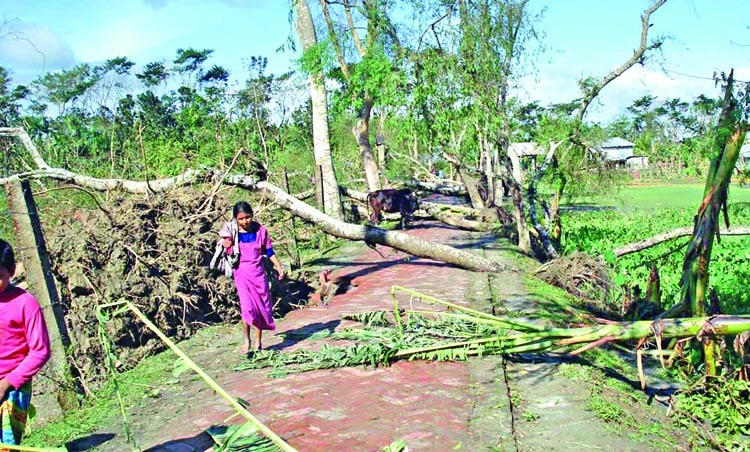 Sarankhola residents still without durable embankment