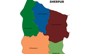 9 held while giving proxy in PSC exams in Sherpur