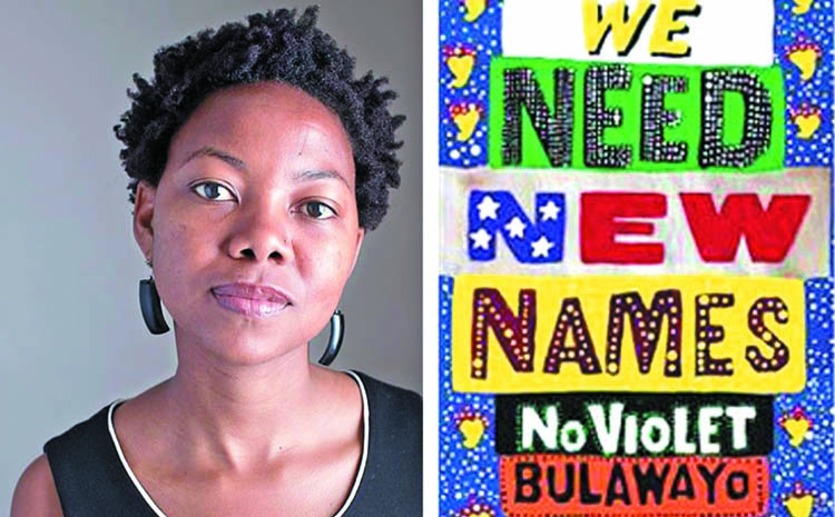 An interview with NoViolet Bulawayo