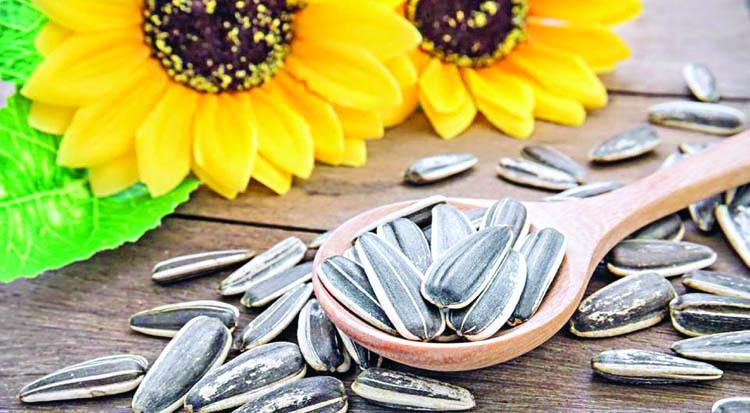 Best use of sunflower seeds