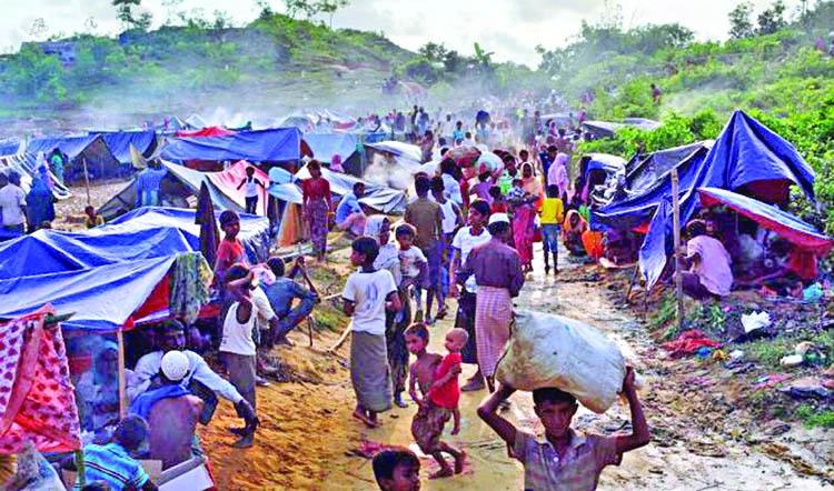 US Congressman sees no sign of Rohingya repatriation