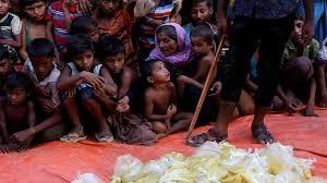 Rohingya exodus behind 'humanitarian catastrophe': ICG