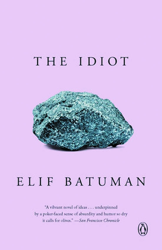 Elif Batuman's 'The Idiot' sets a romantic crush on simmer