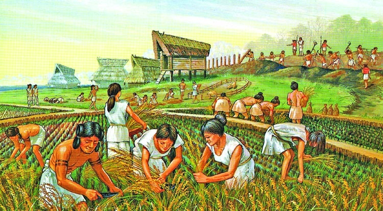 History of the  agricultural revolution