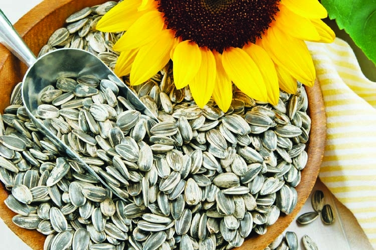 Super seeds are small but mighty