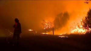 Sydney bushfire 'highly suspicious'