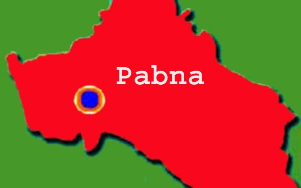 Human hauler driver found dead in Pabna