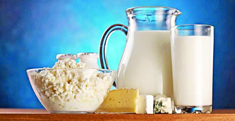 Dairy and alternatives in your diet