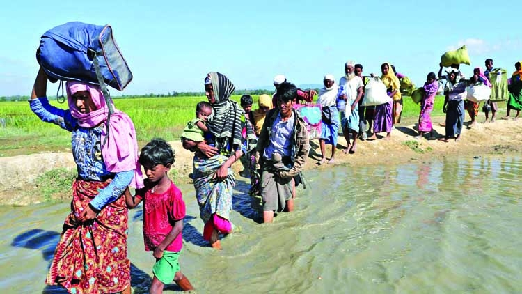 Pressure mounts on Myanmar to take back Rohingyas