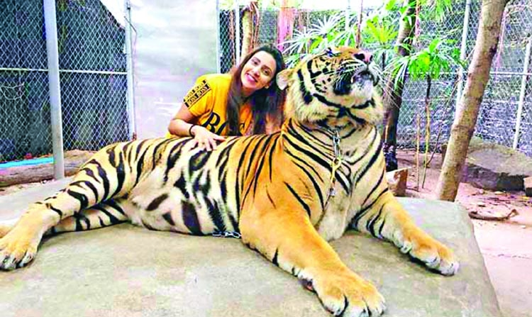 Mim celebrates Eid with alive tiger